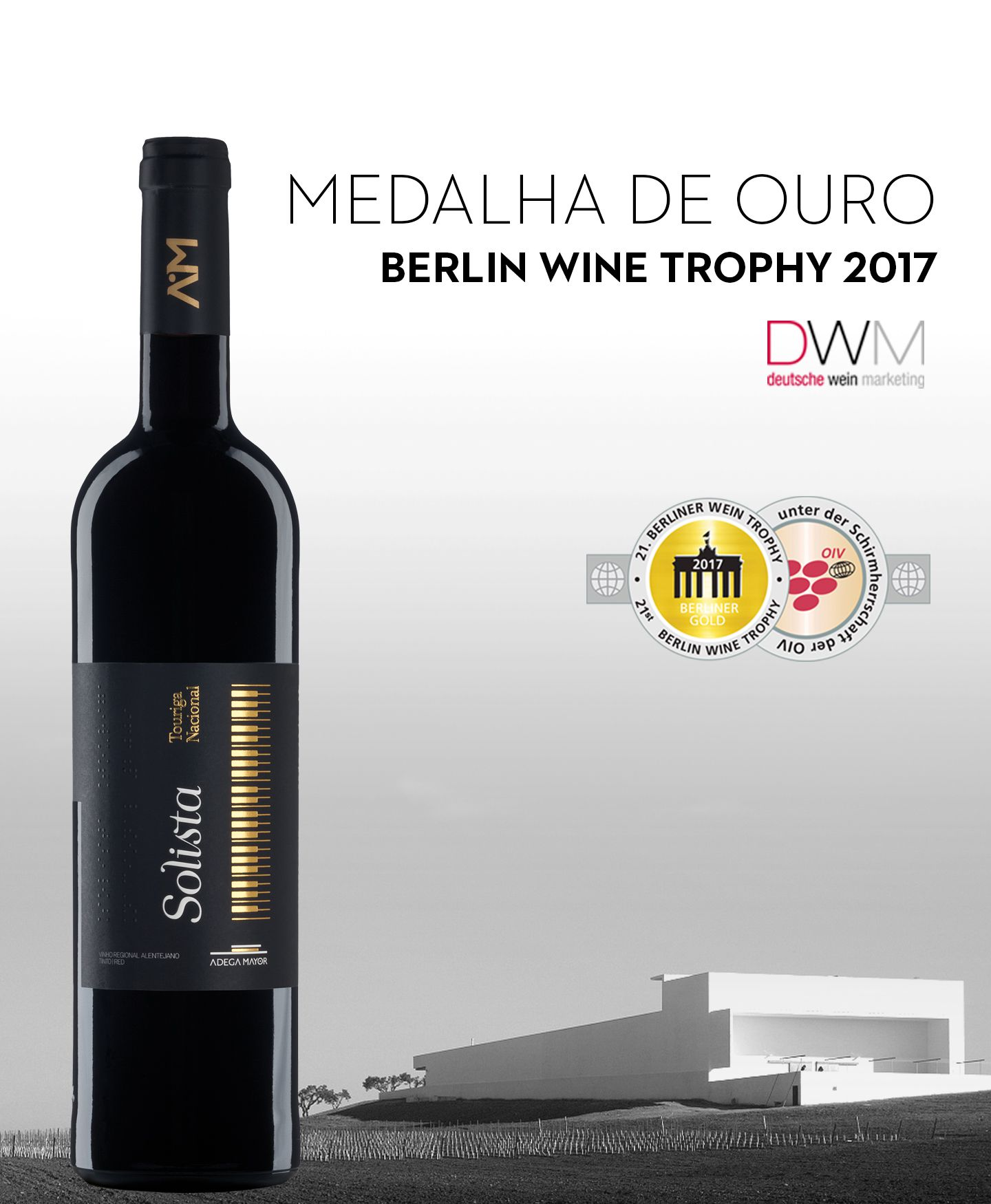 Solista Touriga Nacional 2014 distinguido no concurso Berlin Wine Trophy