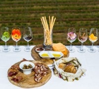 VISIT TO ADEGA MAYOR WITH WINE TASTING AND TAPAS